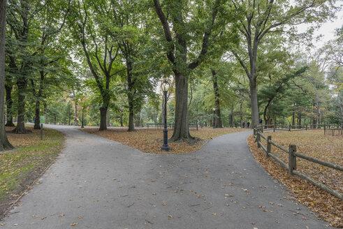 USA, New York City, Manhattan, Central Park - RPSF00136