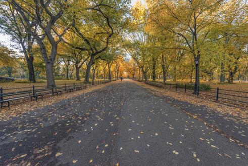 USA, New York City, Manhattan, Central Park - RPSF00160