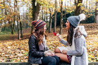 Two pretty women having fun in an autumnal forest - MGOF03693