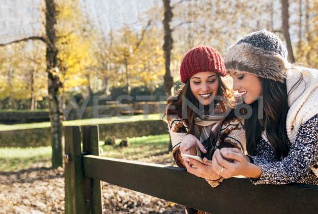 Two pretty women using smartphone in an autumnal forest - MGOF03714 - Marco Govel/Westend61