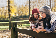 Two pretty women using smartphone in an autumnal forest - MGOF03714