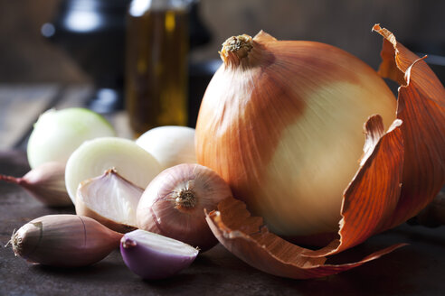 Various sorts of onions - CSF28675