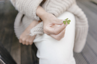 Woman's hand holding cloverleaf, close-up - KNSF03487