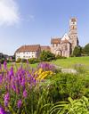 Germany, Baden-Wurttemberg, Black Forest, Alpirsbach abbey church - WDF04246