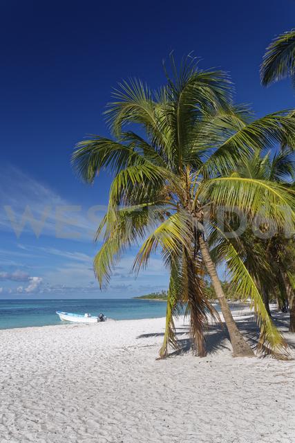 Carribean, Dominican Republic, beach on the Caribbean Island Isla Saona - GFF01055