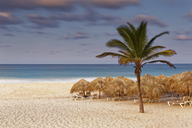 Carribean, Dominican Republic, Punta Cana, Playa Bavaro, beach at sunset - GFF01061