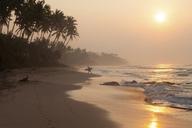 Sri Lanka, Mirissa, sunrise, beach with surfer - FA00074