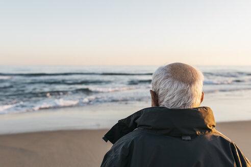 Senior man looking at the sea, rear view - JRFF01525