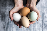 Different eggs, white, brown, light brown and green eggs - SARF03484