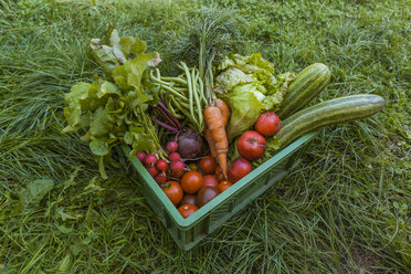 Harvested mixed vegetables and apples in a box - TCF05464