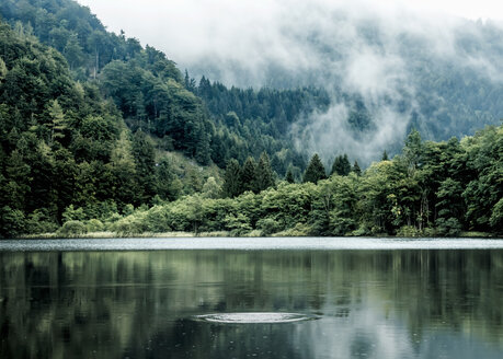 Austria, Salzburg State, Salzkammergut, St. Gilgen, Krotensee Lake, fog - WVF00904