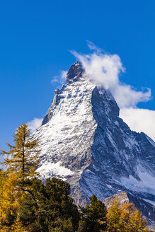 Switzerland, Valais, Zermatt, Matterhorn, trees in autumn - WDF04350