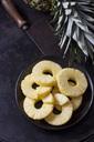 Pineapple slices - CSF28804