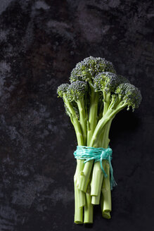 Sprouting broccoli - CSF28813