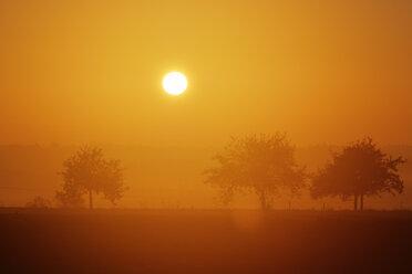 Germany, Bavaria, Lower Bavaria, Altmuehl Valley, sunrise in Jachenhausen - SIEF07683