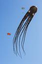 Octopus-shaped kite in the sky - JATF01012