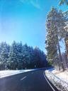 Germany, Eifel, road in snowy forest - GWF05394