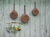 Copper saucepans, sage, rosemary, cress - GISF00297