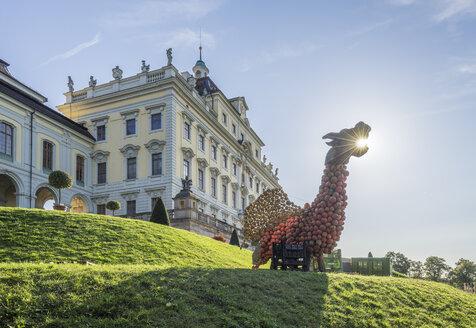 Germany, Baden-Wuerttemberg, Ludwigsburg, Ludwigsburg Palace, Dragon of pumpkins - PVCF01266