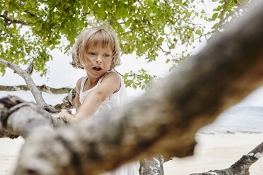 Thailand, Phi Phi Islands, Ko Phi Phi, little girl climbing on a tree on the beach - RORF01098