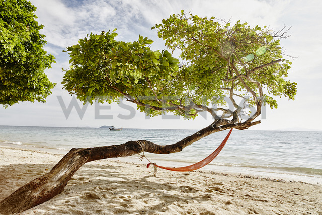 Thailand, Phi Phi Islands, Ko Phi Phi, hammock in a tree on the beach - RORF01113