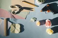 Paper flowers, tinkering - MOMF00376
