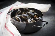 Organic blue mussels in cooking pot - LVF06618