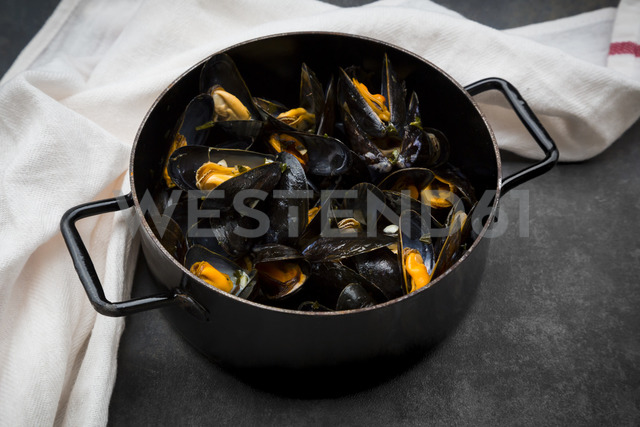 Organic blue mussels in cooking pot - LVF06621