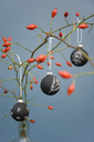 Christmas baubles, blackboard paint painted with chalk, rosehip twig - GISF00301