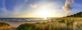 Germany, Mecklenburg-Western Pomerania, Zingst, beach at sunset - PUF01228