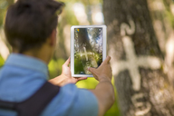 Back view of man taking photos with tablet in the forest - ZEF14946
