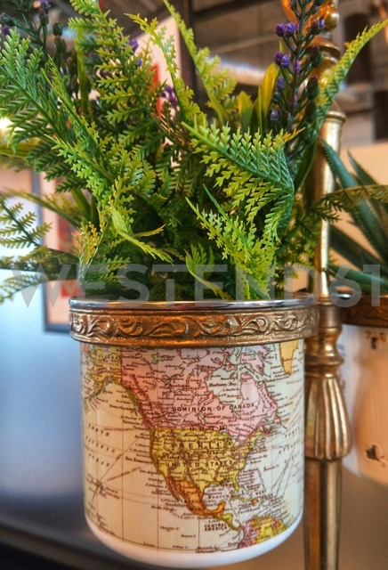 plastic plant in a pot - NGF00440 - Nadine Ginzel/Westend61