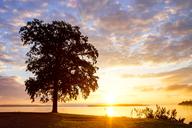 Germany, Mecklenburg-Western Pomerania, Schwerin, Lake Schwerin at sunset - PUF01295