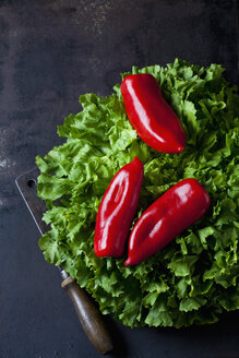 Endive salad, three red pointed peppers and old cleaver on rusty ground - CSF28843