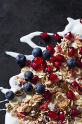 Fruit granola with dried and fresh fruits on yoghurt splash - CSF28870