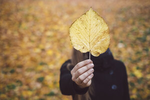 Woman's hand holding yellow autumn leaf, close-up - JSCF00036