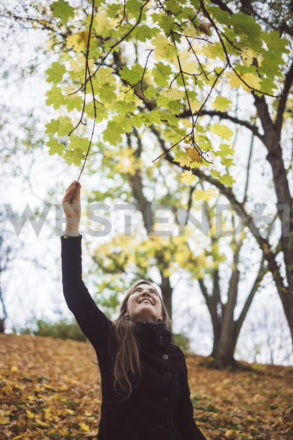 Happy young woman in autumnal forest - JSCF00039 - Jonathan Schöps/Westend61