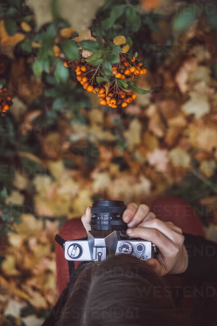 Young woman taking photos in autumnal nature with old camera, top view - JSCF00042 - Jonathan Schöps/Westend61