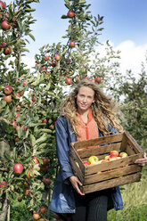 Smiling woman harvesting apples in orchard - PESF00960