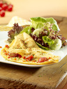 Omelette with salad - SRSF00626