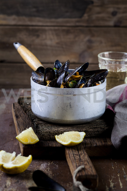 Blue mussels in cooking pot - SBDF03456