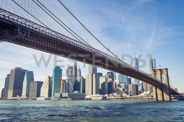 USA, New York City, skyline and Brooklyn Bridge as seen from Brooklyn - SEEF00030