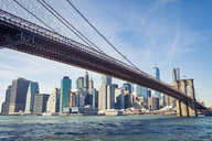 USA, New York City, skyline and Brooklyn Bridge as seen from Brooklyn - SEEF00030