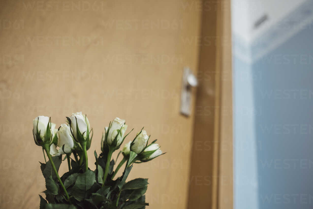 White farewell flowers at apartment door of deceased neighbour - JSCF00059 - Jonathan Schöps/Westend61