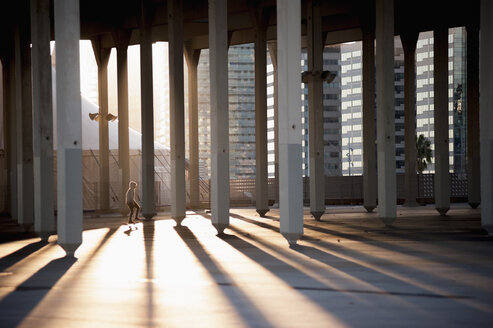 Sunlight through pencil shaped columns - FSIF00122