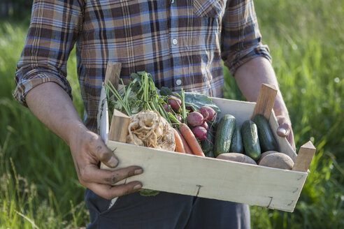 Midsection of mature man carrying crate of freshly harvested vegetables at garden - FSIF00179