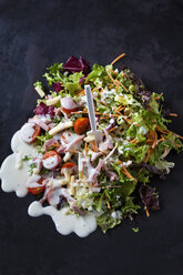 Mixed salad with lettuce, radicchio, carrots, cherry tomatoes, red radish and natural yoghurt sauce - CSF28899