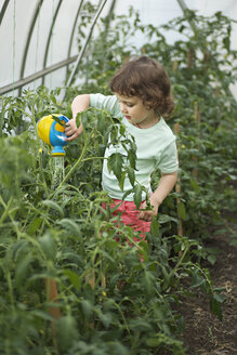 A young girl watering plants in a greenhouse - FSIF00455