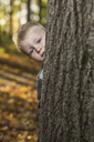 A young boy peeking from behind a tree trunk - FSIF00521