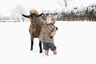 Baby girl putting her hat on goat - FSIF00677